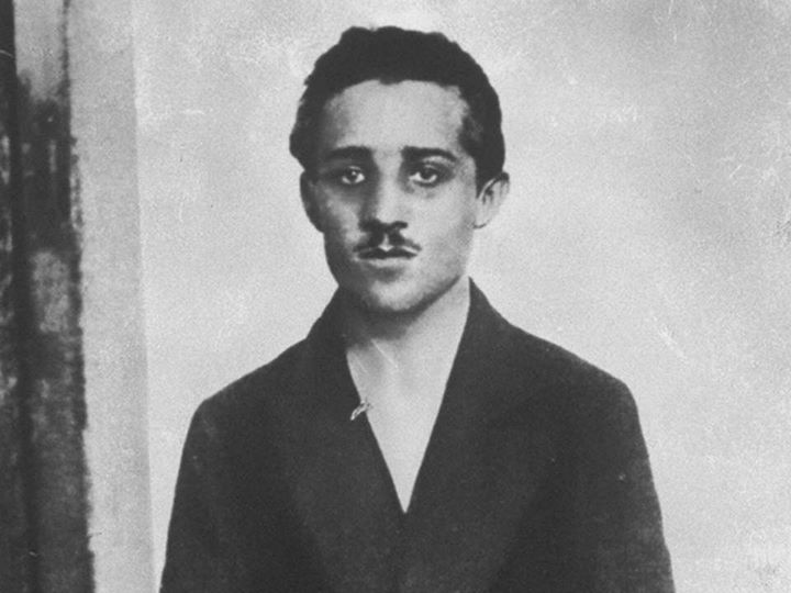 Gavrilo Princip and the First World War