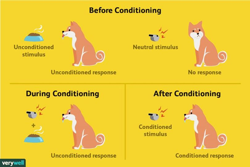 Ivan Pavlov, Marketing, and Classical Conditioning