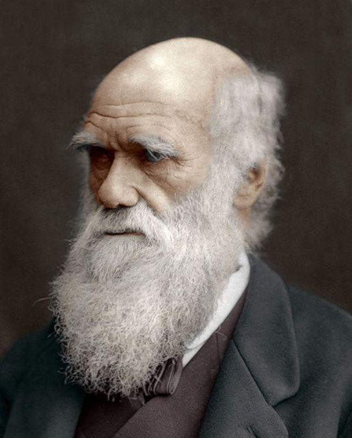 Question of the Day | Charles Darwin