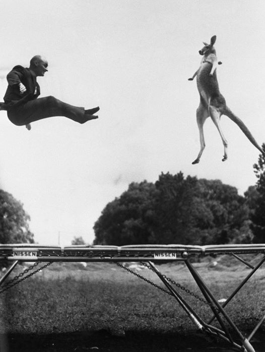 History of the Trampoline