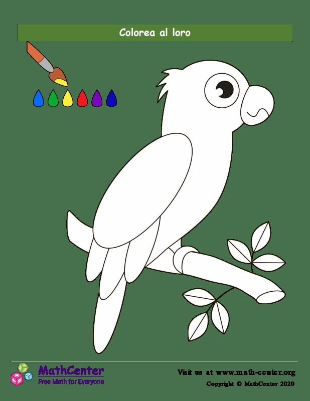 Colorear el loro