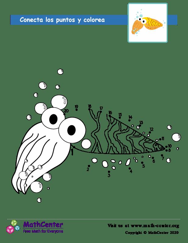 Conecta los puntos Hasta 20 - Calamar