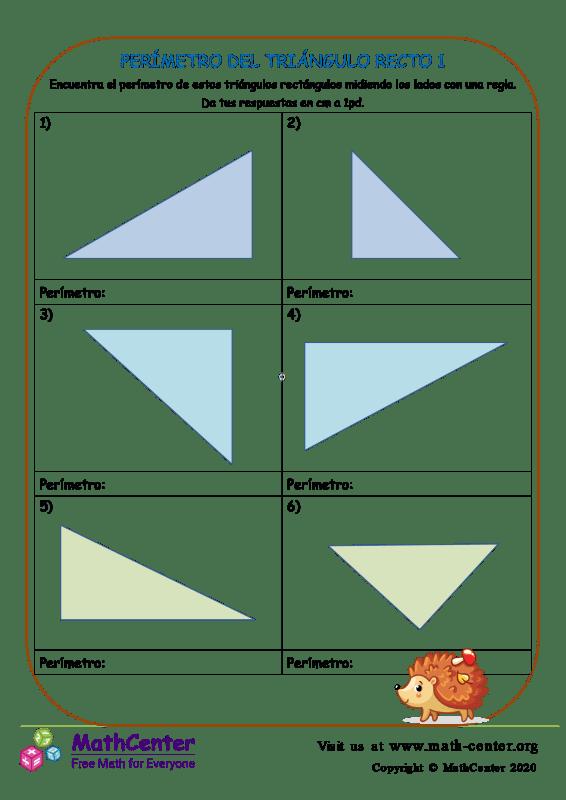 Perímetro Del Triángulo Recto 1