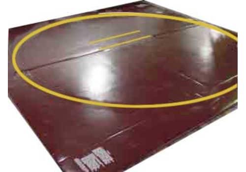10x10 Wrestling Mat