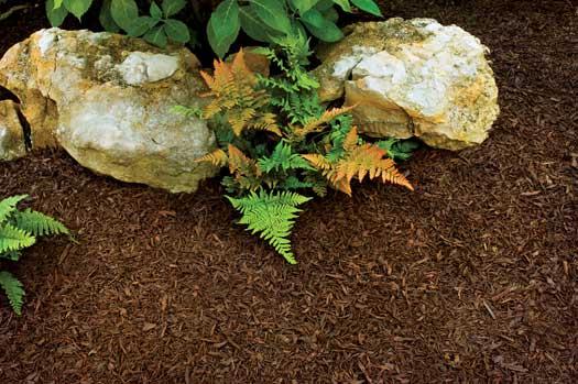 Shredded Rubber Mulch For Landscaping