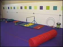 Carpeted Foam Roll in Purple