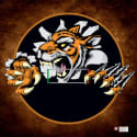 LiteWeight Wrestling Mat - Tiger (10'x10')