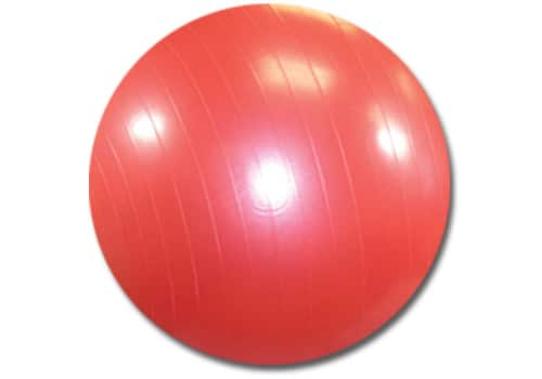 Exercise Ball with Pump (Burst Resistant)