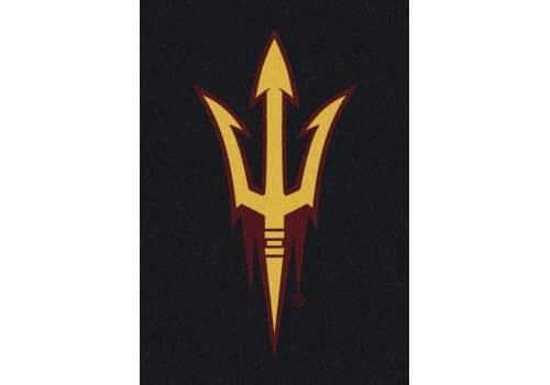 NCAA Team Spirit Rug