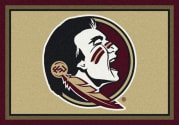 Florida State Seminoles - Sports Team Rug