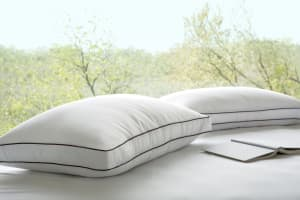 Saatva Pillow