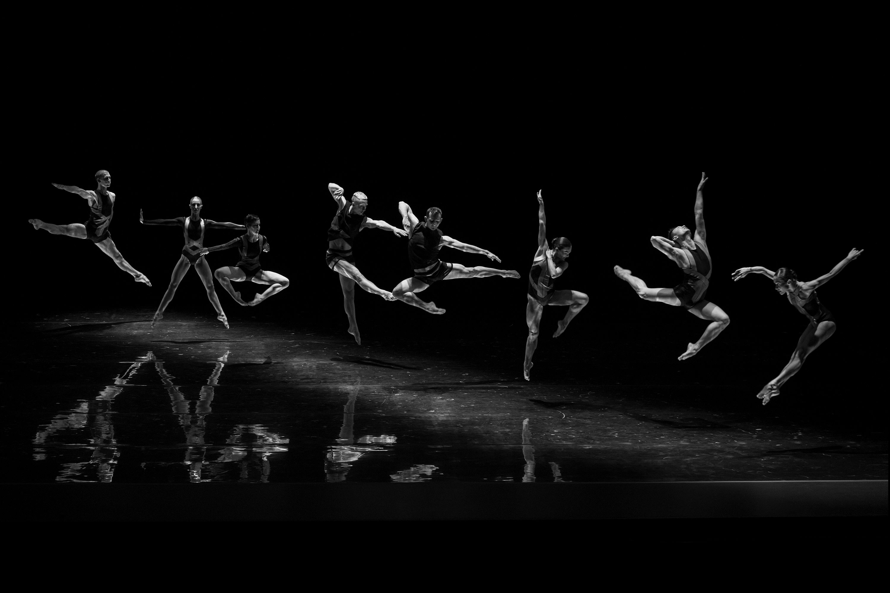 Sydney Dance Company — MAUD — We build enduring brands in a