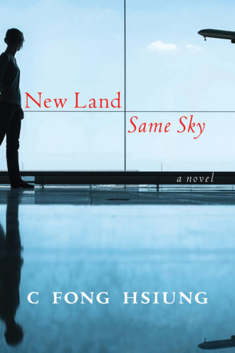 New Land Same Sky cover