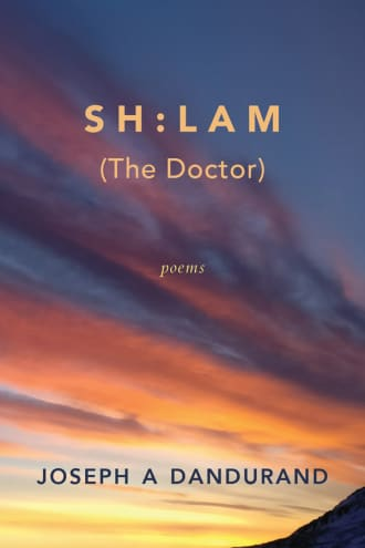 Cover image for SH:LAM (The Doctor)