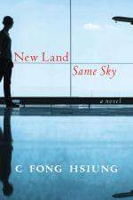 New Land Same Sky cover