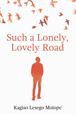 Such a Lonely, Lovely Road cover