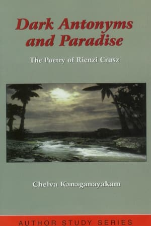 Dark Antonyms and Paradise cover