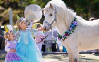 Unicorn Birthday Parties