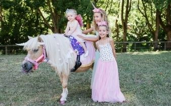 Gold Coast Unicorn Party
