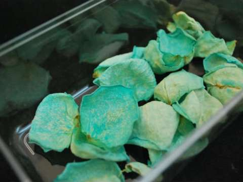 Κρυσταλλωμένα άνθη για διακόσμηση
