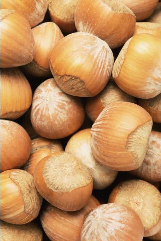 Συνταγή Τούρτα κάστανο