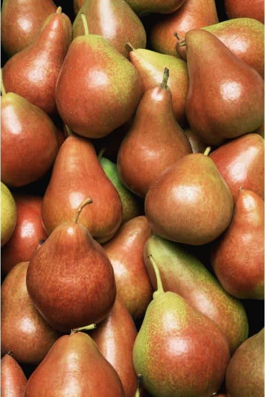 Συνταγή Τάρτα με καραμελωμένα αχλάδια