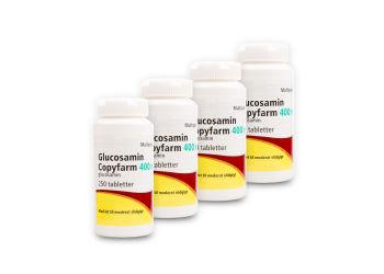 Glucosamin Copyfarm