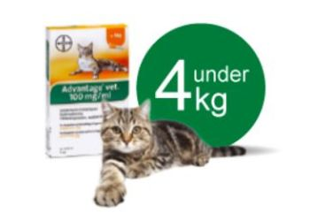 Advantage Vet. Opløsning Kat 0-4 kg