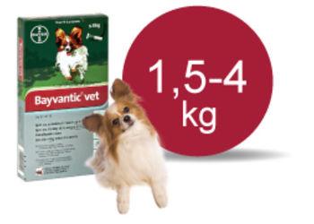 Bayvantic Vet 1,5 - 4 kg