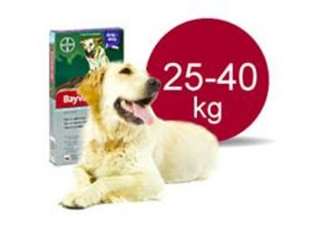Bayvantic Vet 25-40 kg