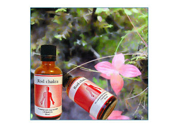 Holistica-Medica Rod maskulin chakra