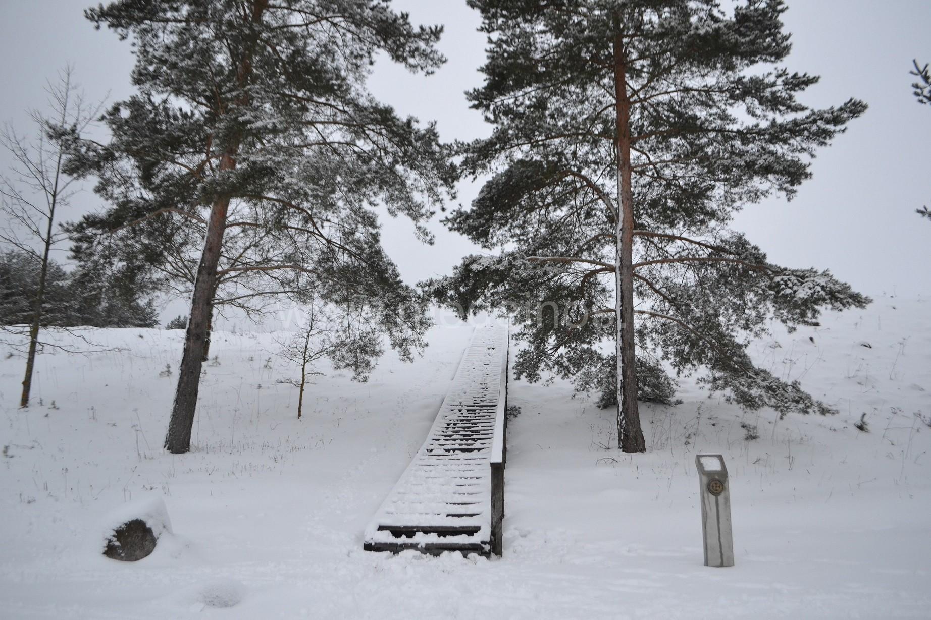 Lygamiškio piliakalnis Utenos rajone