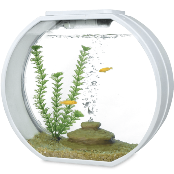déco round aquarium kit black 20l