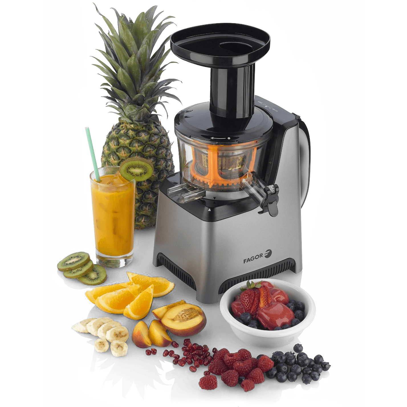 Fagor Slow Juicer Manual : Fagor Platino Plus Slow Juicer and Sorbet Maker