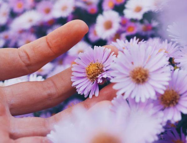 10 astuces pour gérer son allergie au pollen