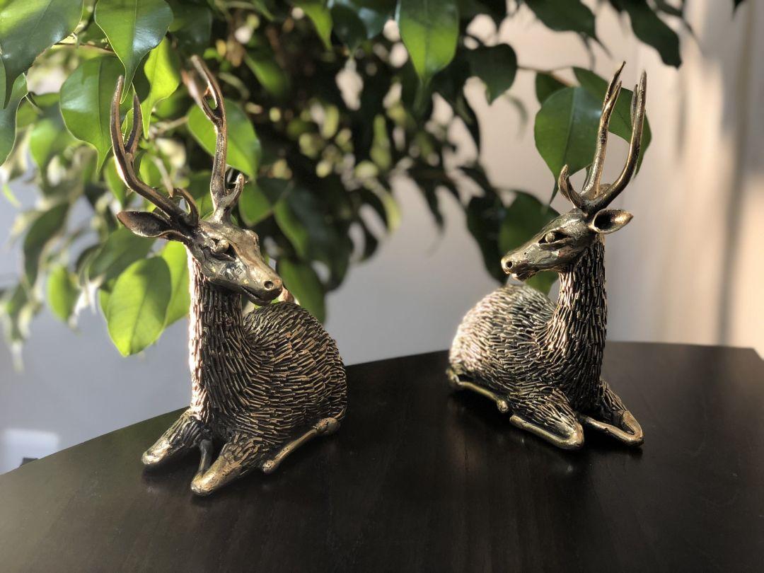 Antler Deer Couple