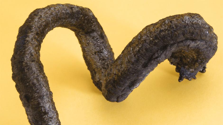 Сarbon snake
