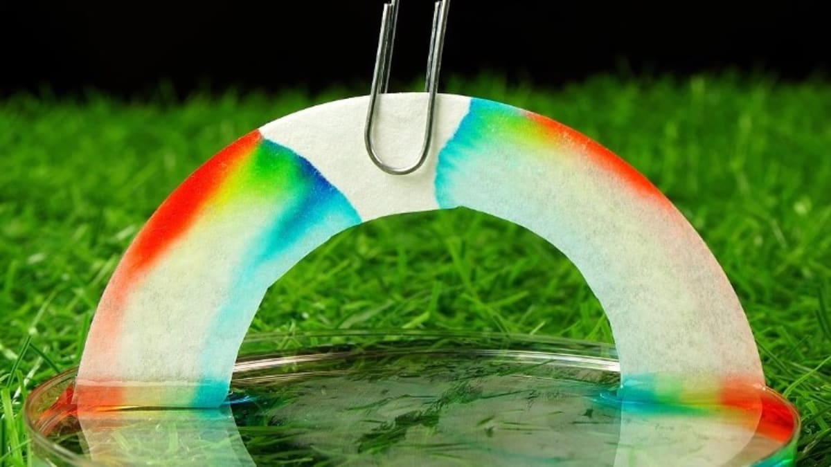 How to grow a rainbow at home - MEL Chemistry