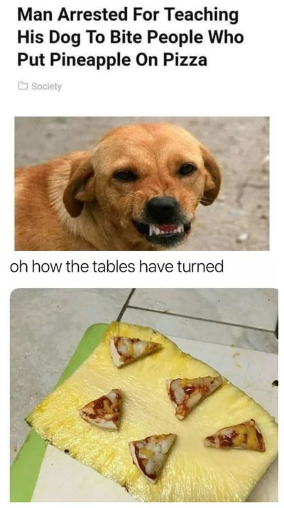 pineapple on pizza attack dog