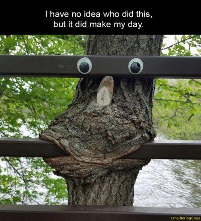 Metal eating tree