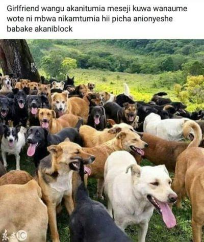 Msichana kaleta mchezo