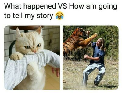 That's what happened