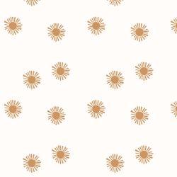 Shining Sun Wallpaper