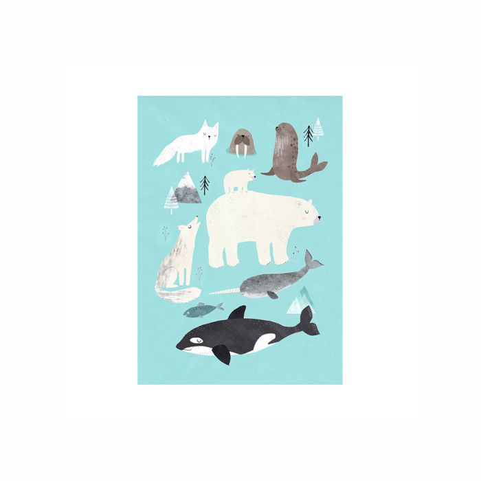 Arctic Animals Poster Print 50 X 70cm