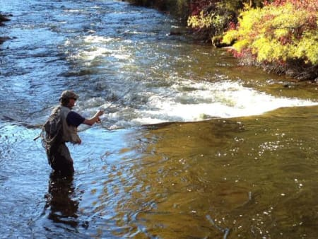 Fly Fishing the edge of a pool on Frying Pan River near Basalt Colorado