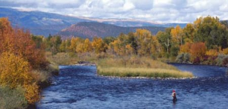 Fly fishing on the Roaring Fork River near Basalt Colorado in the fall