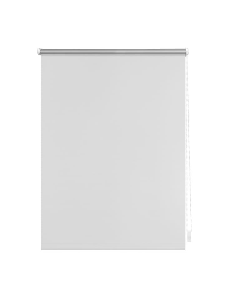 Lichtblick Seitenzugrollo in Weiß