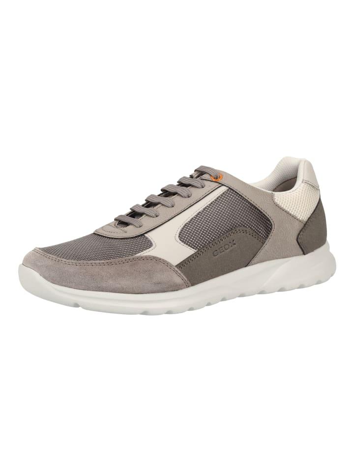 Geox Sneaker in Grau
