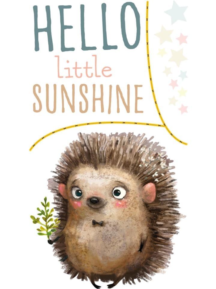 Dekodino Wandtattoo Kinderzimmer Spruche Aquarell Igel Hello Little Sunshine In Bunt Gunstig Kaufen Limango