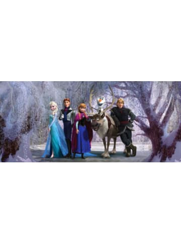 AG Design Wandtapete Disney Frozen, 202 x 90 cm